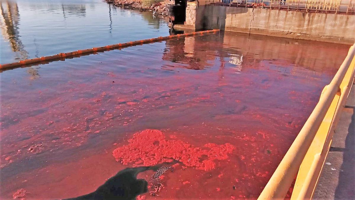 FOTO Șantierul Naval Damen Mangalia, amendat cu 30.000 de lei pentru poluarea docurilor de reparații
